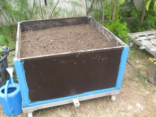 Foto 11-Patatas tardias Mayo 2009